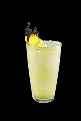 Agave Tonic Tequila Hornitos